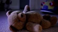Teddy sul pavimento a notte.