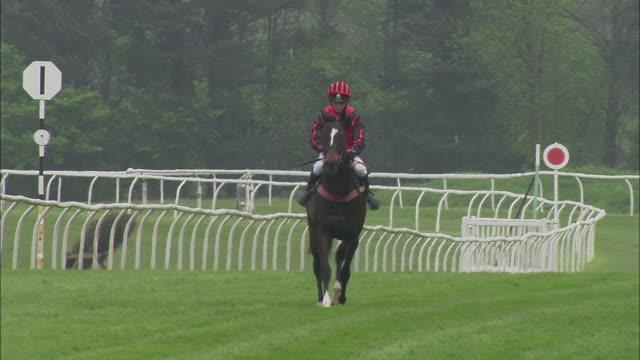 WS TD TU Teen jockey on horseback running at Newbury Racecourse / Newbury, England, UK
