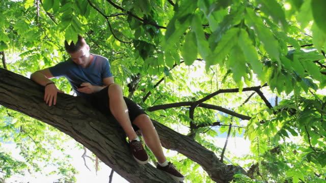 Teenage boy sits in tree limb, sends/ receives text