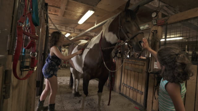 Teenage Girl Taking Care of Horse in Stable