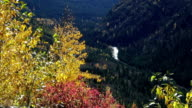 Telephoto shot of river in mountain valley with golden leafed trees blowing in the wind in foreground.