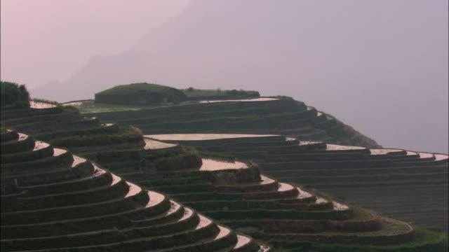 MS, terrace rice paddies at sunrise, Ping'an, China