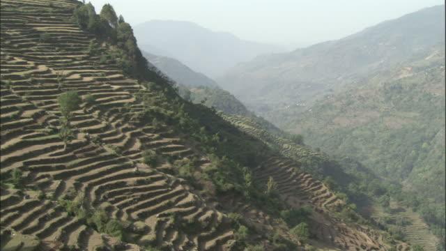 Terraced hillside, Okhimath, India Available in HD.