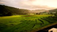 Terraced Paddy Field.