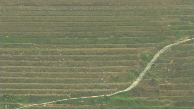 MS HA Terraced rice field, Guilin, Guangxi Zhuang Autonomous Region, China