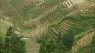WS HA Terraced rice field, Guilin, Guangxi Zhuang Autonomous Region, China
