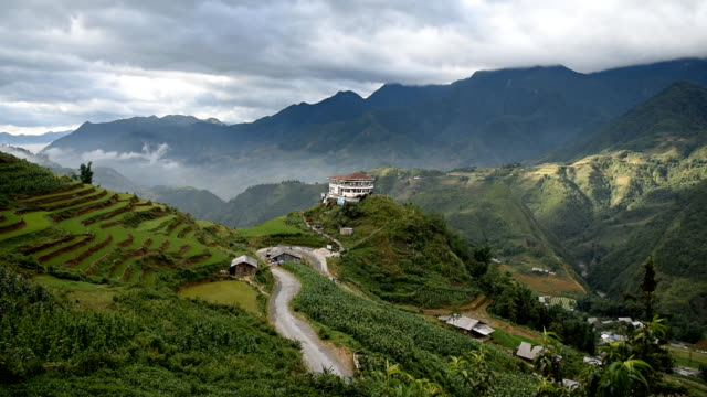 terraced rice field in Sapa, Vietnam