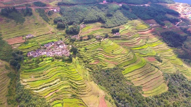 Terraced rice paddy field on the mountain, Guizhou Province, China, Aerial view