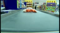 Tesco store sales and price cut offers Checkout conveyor belt as supermarket items roll towards / Supermarket employee checking shelves of DVDs /...