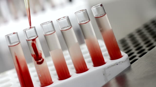 testing in laboratory