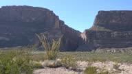 Texas Big Bend Santa Elena Canyon with ocotillo