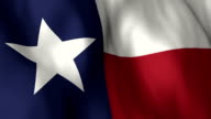 Texas Flagge hohen Detail-Loop