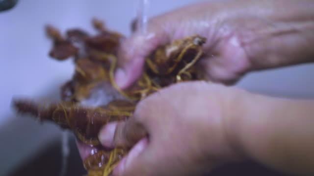 Thai-Küche kochen im lokalen Stil