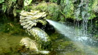 The ancient Dragon spring water