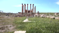 The Artemis Temple in the ancient roman city of Gerasa in Jerash, Jordan