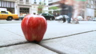 HD TIME-LAPSE: The Big Apple