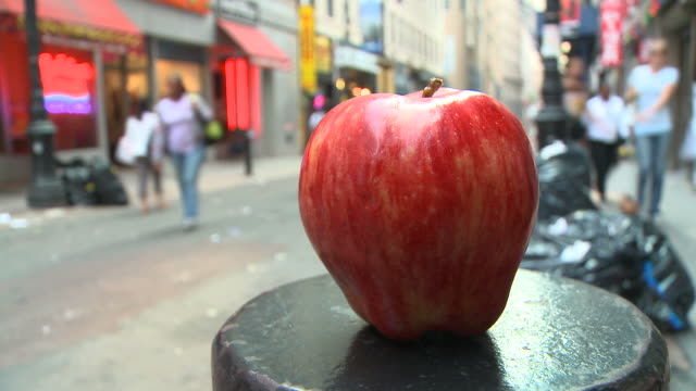 HD TIME-LAPSE: The Big Apple-Metaphor of New York