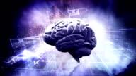 the brain concept