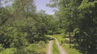 De camera het pad volgen. De luchtfoto drone weergave de landweg in het bos in de Pocono Mountains op de zonnige zomerdag.