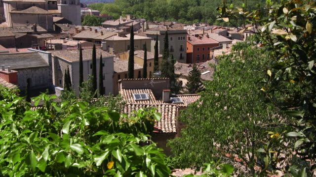 The Cathedral of Saint Felix and houses in the medieval district of Girona