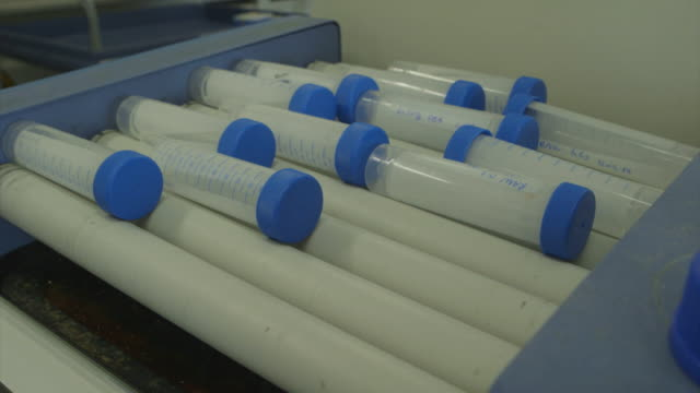 The contents of test tubes are mixed on a rolling machine.