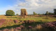 The Cork Stone on Stanton Moor, Peak District National Park, Derbyshire, England, UK