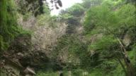 The Dangyo Falls and Dangyo Shrine