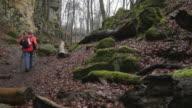 The Devil's Canyon at Ferschweiler Plateau, Eifel, Rhineland-Palatinate, Rheinland-Pfalz Germany
