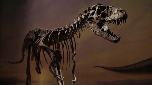 The dinosaur skeleton with a backdrop of earthy colors