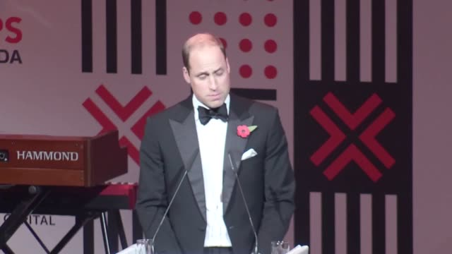 The Duke of Cambridge hails progress in combating the illegal wildlife trade at the Tusk gala dinner and credits China and the UK government in...