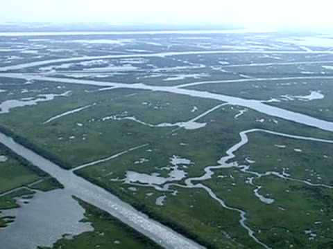 The end to the massive oil leak in the Gulf of Mexico has stanched the biggest US environmental crisis ever but Louisiana must now determine just how...