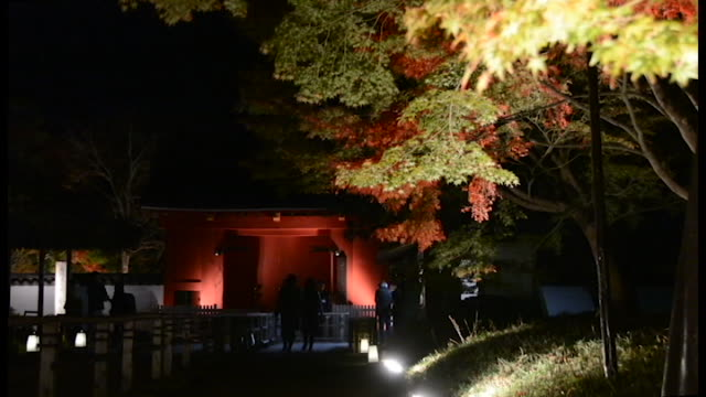 The famed 1000yearold Hoodo or Phoenix Hall of Byodoin temple here will be lit up for the first time from Nov 18 as part of a special limited night...