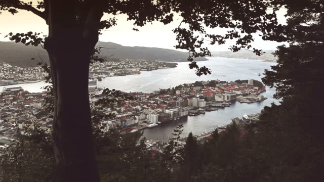 The harbor of Bergen, view from Floyen