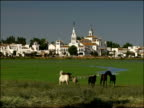 The Hermita of El Rocio, emblematic church at centre of one of Spain's largest pilgrimages, horses graze in water meadow in foreground, Andalucia, Spain
