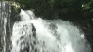 The Karasawa No Taki waterfall cascades below trees in Ueda, Nagano.