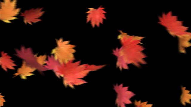 The leaf to dance-HD 1080 loop+alpha
