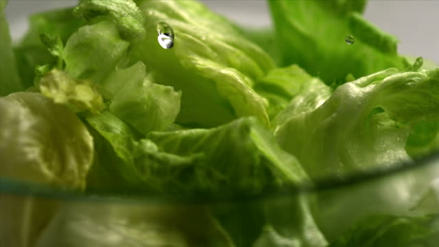 The lettuce salad and water, Slow Motion