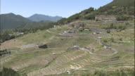 The Maruyama Senmaida rice terraces zig-zag across a mountain in Mie, Japan.