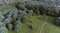 The panoramic aerial drone view to the forest in the Pocono Mountains at the summer sunny day.