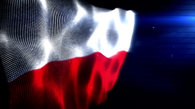 The Polish Flag - Background Loop (Full HD)