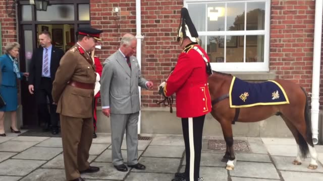 The Prince of Wales came facetoface with two fourlegged mascots and met a Zulu warrior during a visit to a military museum in Brecon as part of the...