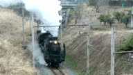 The rail fan's favorite Paleo Express steam train took a test run through picturesque fields of plum blossoms here on March 13 ahead of this year's...