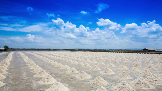 The salt industry is the largest salt.