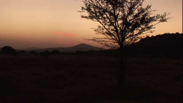 The sky glows behind South African terrain.