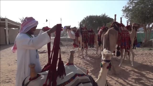 The sprawling Janadriyah festival on the edge of Riyadh is the kingdoms major annual cultural showcase including traditional dance crafts food music...