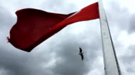 The Turkish flag flutters in a strong breeze on February 16 2017 in Istanbul Turkey