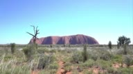 The urge to scramble up Uluru the great red rock rising out of Australias desert heart is difficult to resist for many tourists despite the risk of...