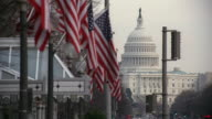 LA The U.S. Capitol Building and a row of American flags waving in the breeze / Washington, D.C., United States