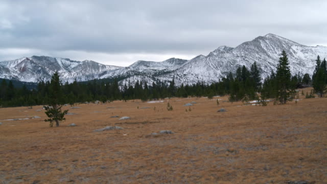The view to the Yosemite national park from the Oil Plant Road, near by to the park's boundary