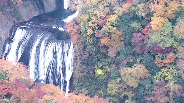 There are few better places to view autumn in its full fiery glory than the magnificent Fukuroda Falls The falls are 120 meters high and have four...